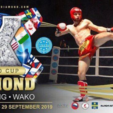 Успех тольяттинского бойца на Кубке мира по кикбоксингу