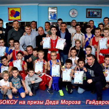 В «Гайдаровце» прошёл новогодний турнир